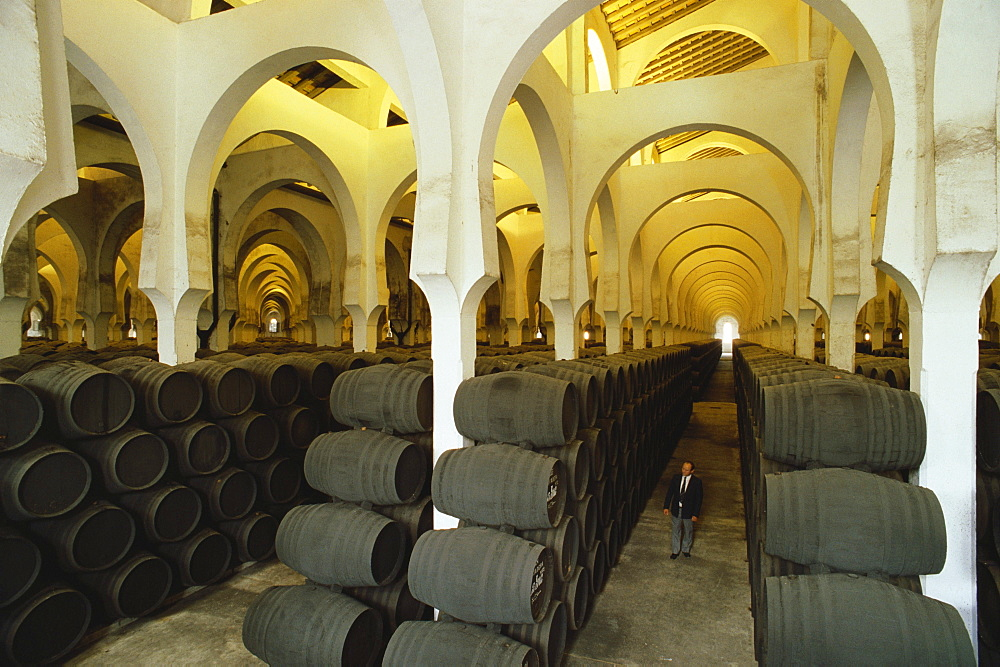 Sherry barrels in long rows in the horseshoe-arched wine depot La Mezquita of the Bodegas Pedro Domeq, Jerez de la Frontera, Cadiz province, Andalusia, Spain
