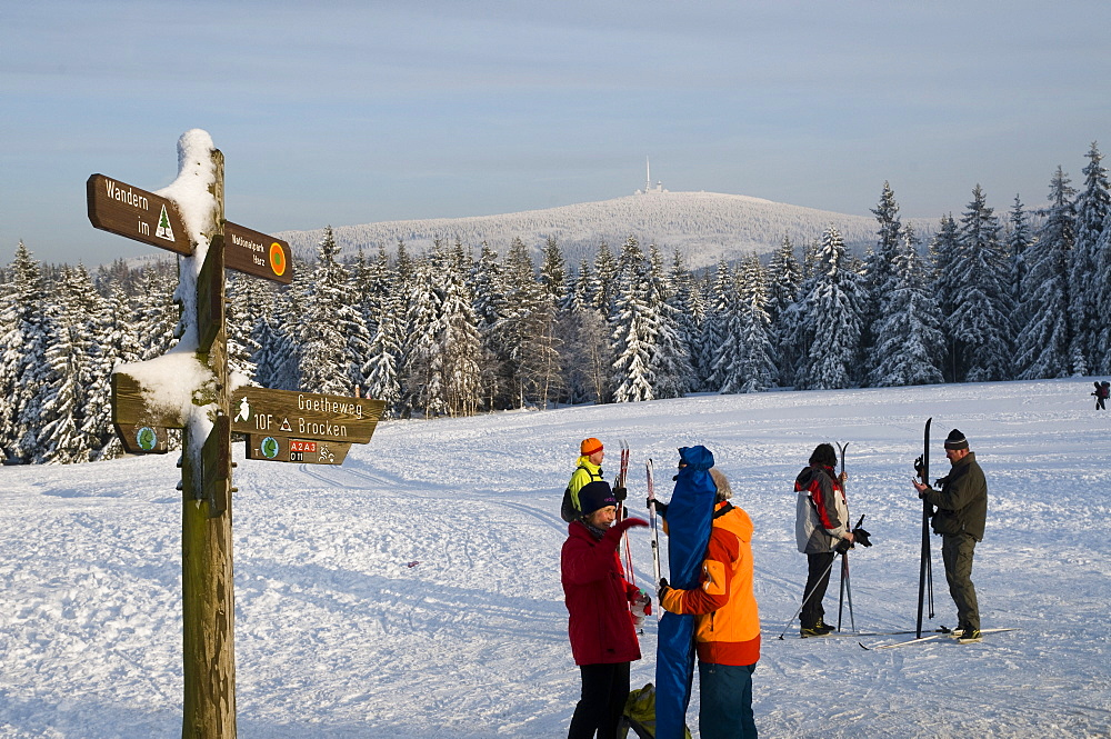 Cross country skiers, snowy forest, Brocken mountain in the background, Torfhaus, Altenau, Harz, Lower Saxony, Germany