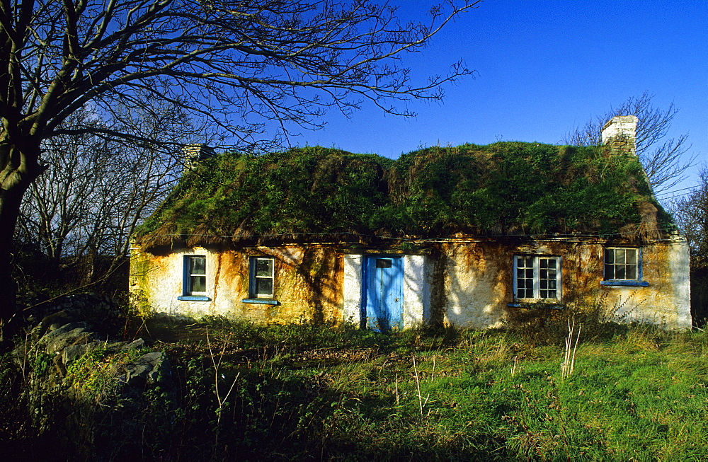 Cottage with grass covered roof, Inishowen peninsula, County Donegal, Ireland, Europe