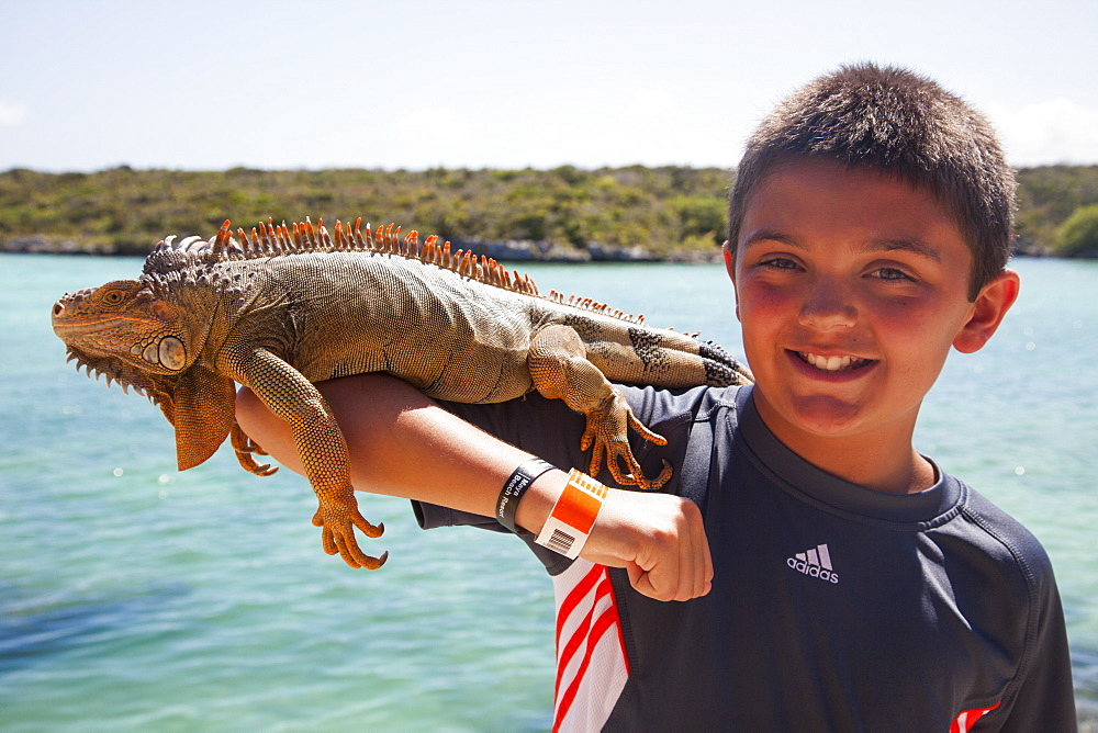 Boy with iguana, Ctenosaura similis, on arm at Xel-Ha Water Park, Tulum, Riviera Maya, Quintana Roo, Mexico