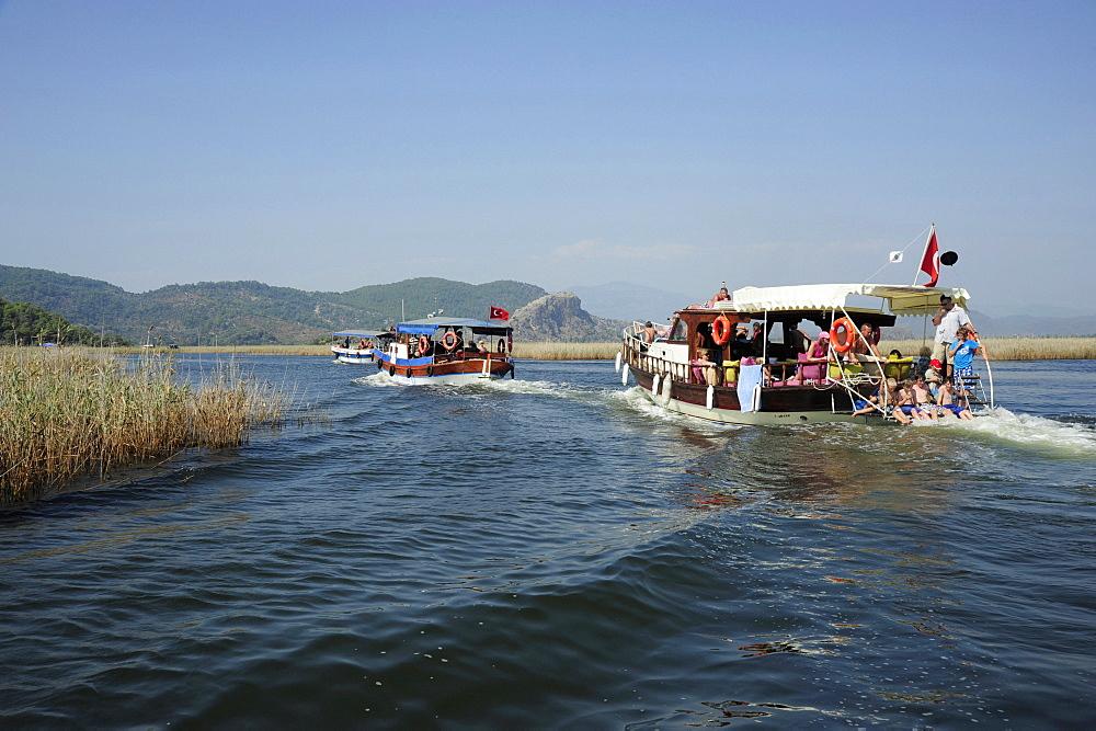 Excursion boats on the river, river delta in nature preservation area between Caunos and Iztuzu beach, Turtle beach, Dalyan in the district of Mugla, Mediterranean, Turkey