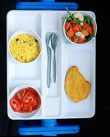 Canteen food on a plastic tray, University of Tuebingen, Baden-Wuerttemberg, Germany