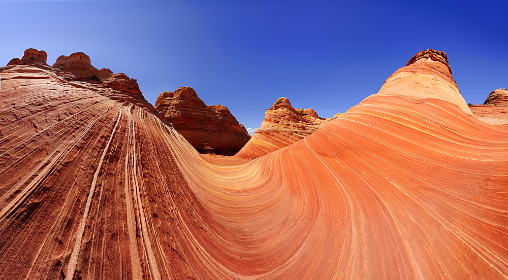 Panorama of red sandstone, The Wave, Coyote Buttes, Paria Canyon, Vermilion Cliffs National Monument, Arizona, Southwest, USA, America
