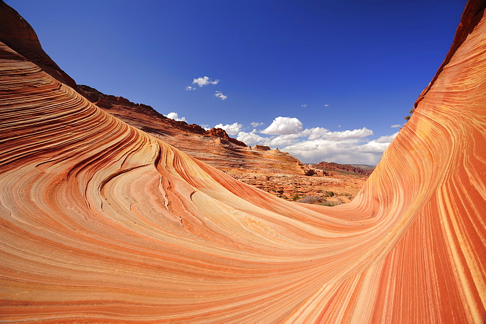 Red sandstone formation, The Wave, Coyote Buttes, Paria Canyon, Vermilion Cliffs National Monument, Arizona, Southwest, USA, America