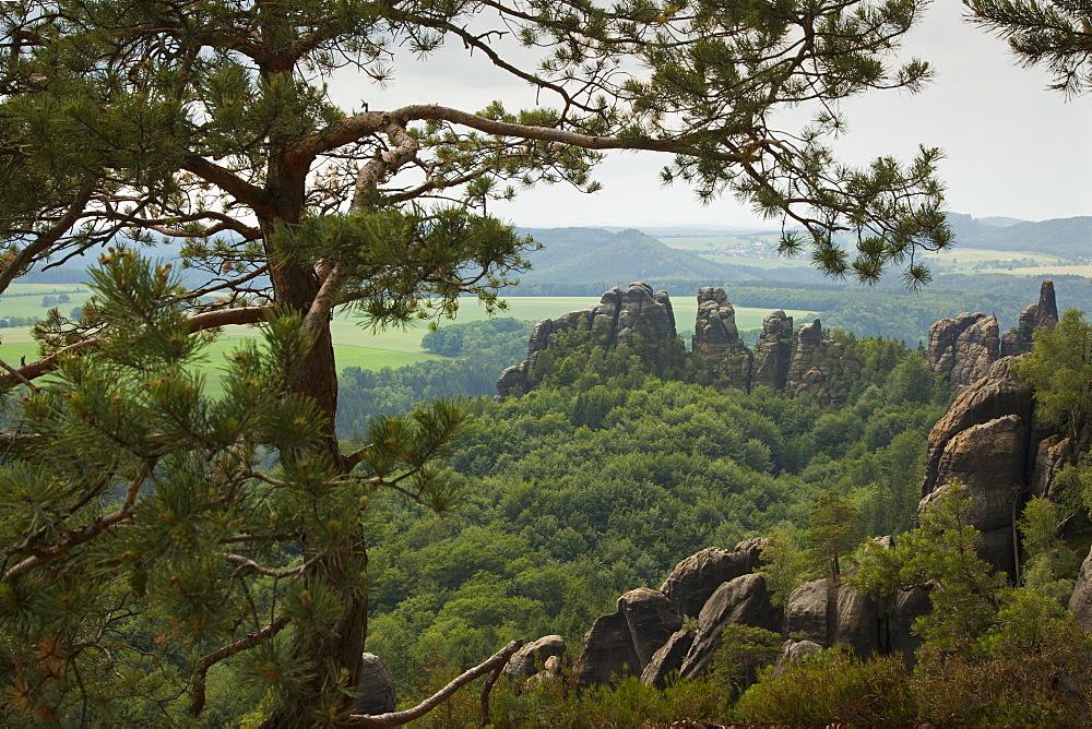 View of Schrammsteine Rocks, National Park Saxon Switzerland, Elbe Sandstone Mountains, Saxony, Germany, Europe