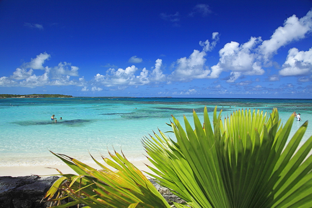 View of Pineapple Beach in the sunlight, Antigua, West Indies, Caribbean, Central America, America