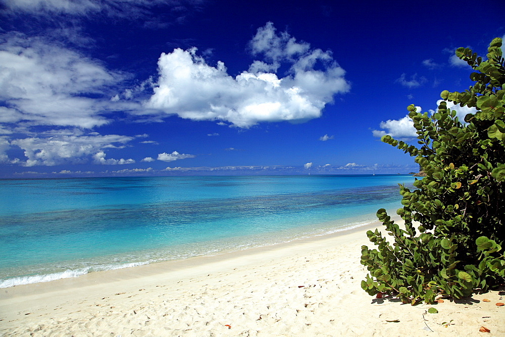 Deserted Darkwood Beach under blue sky, Caribbean Sea, Antigua, West Indies, Caribbean, Central America, America