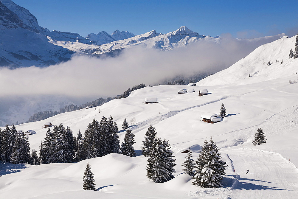 Deep snow at some alpine stables and huts above Grindelwald, Jungfrauregion, Bernese Oberland, Canton Bern, Switzerland, Europe