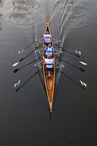 Rowing boat with three rowers, sculling, Water Sports, Sport