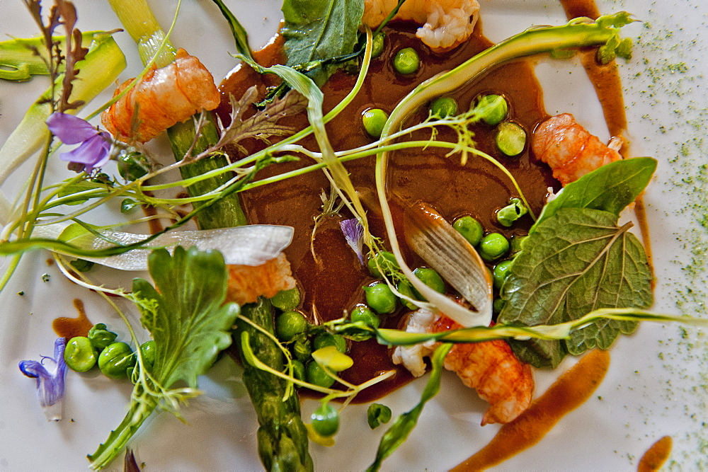 Salad with prawns, Belcastel, Midi-Pyrenees, France