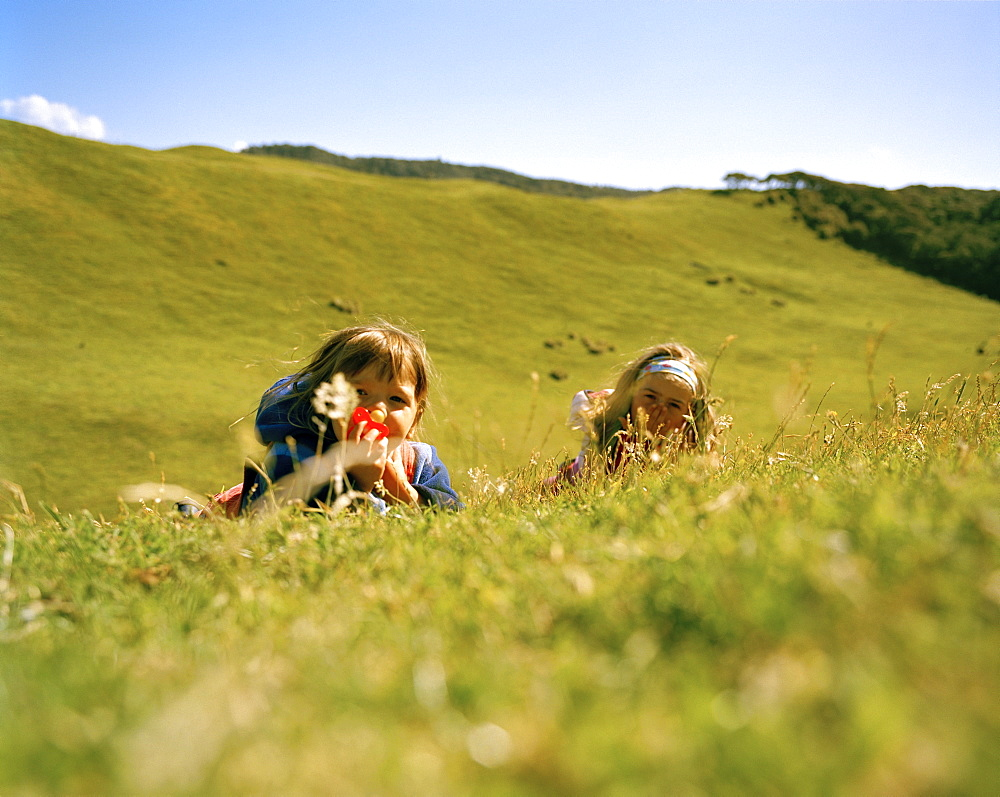 Children playing on a meadow in the sunlight, North coast, South Island, New Zealand