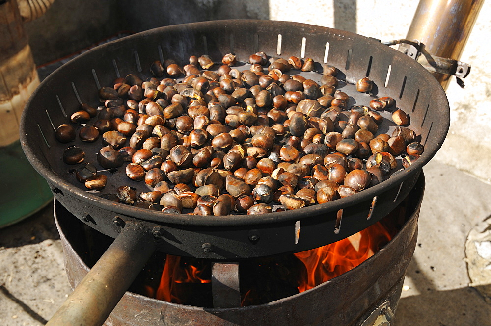 Chestnuts roasting over a fire, South Tyrol, Italy