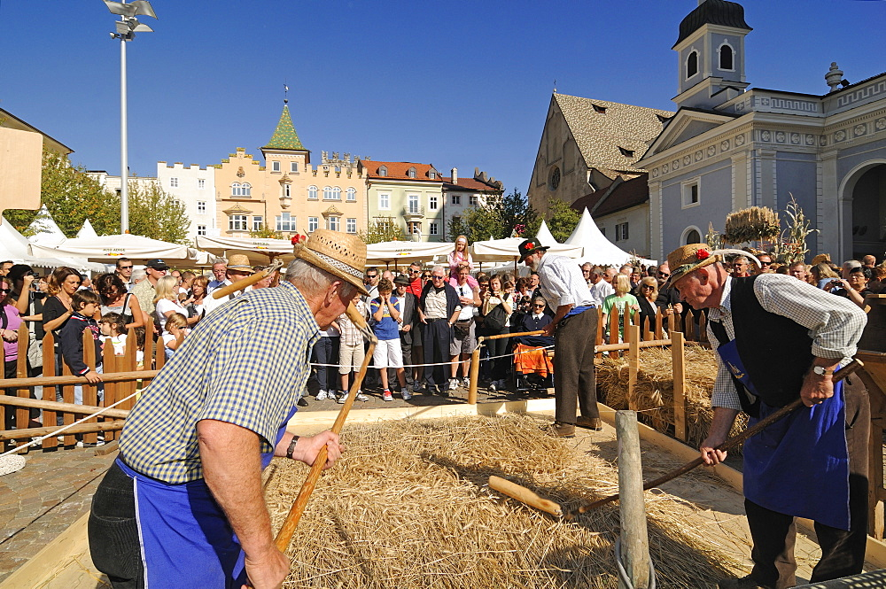Men threshing corn, Harvest festival on cathedral square, Brixen, South Tyrol, Italy