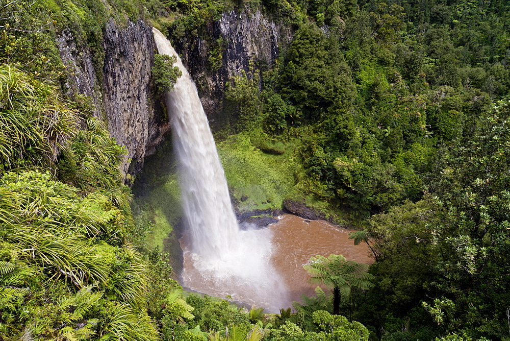Bridal Veil Falls with lush vegetation, tourist attraction near Raglan Beach, Waikato, North Island, New Zealand - 1113-96063