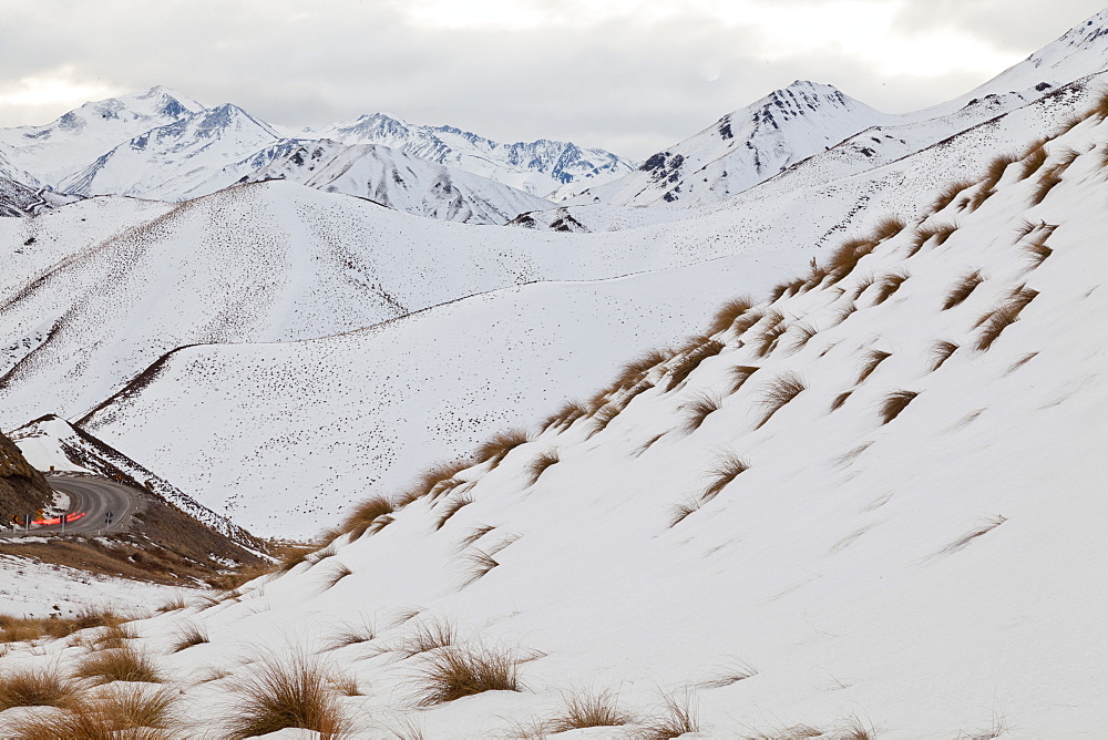 Tussock grass in snow, mountain scenery, Lindis Pass, Otago, South Island, New Zealand