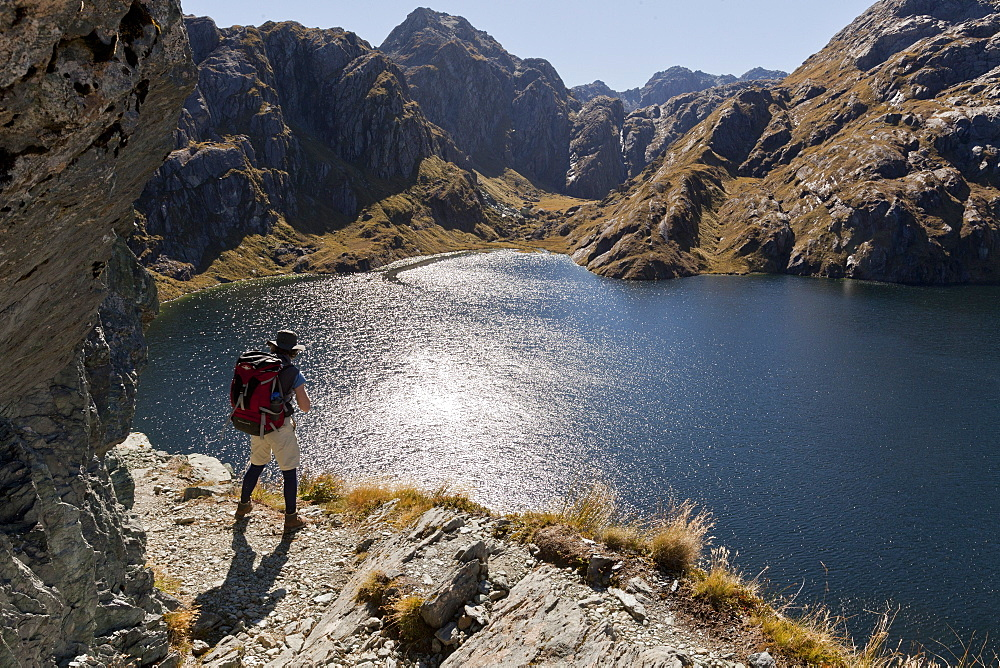 Hiker on the Routeburn Track at Lake Harris, Great Walk, Mount Aspiring National Park, Fiordland National Park, South Island, New Zealand