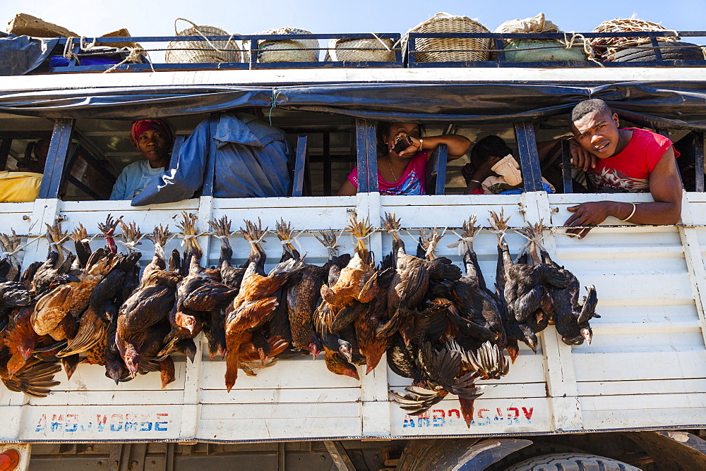 Bus transporting poultry, Tulear, South-west Madagascar, Africa