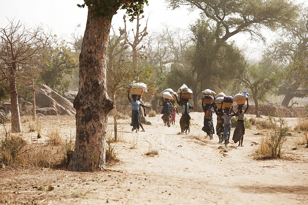 Women on the way to a market, Dogon land, Mopti region, Mali
