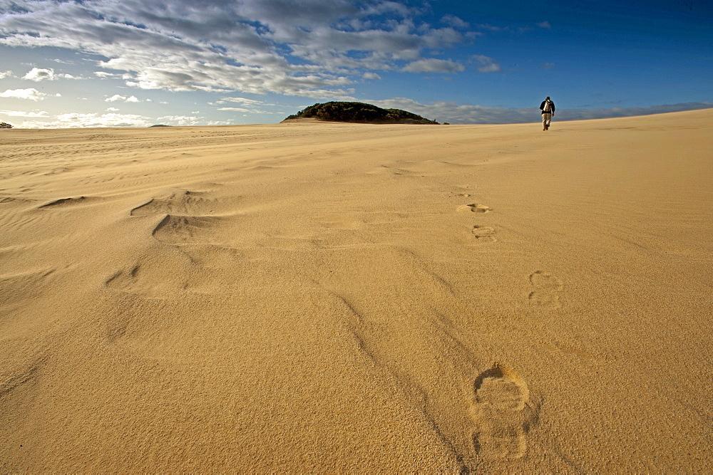 Person walking along the Thurra sand dunes, Croajingolong National Park, Victoria, Australia