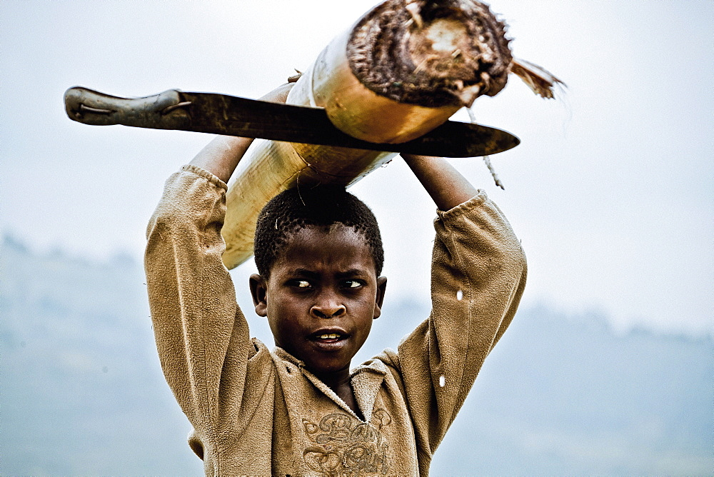 Boy carrying a banana tree and machete, Lake Buyonyi, Uganda, Africa
