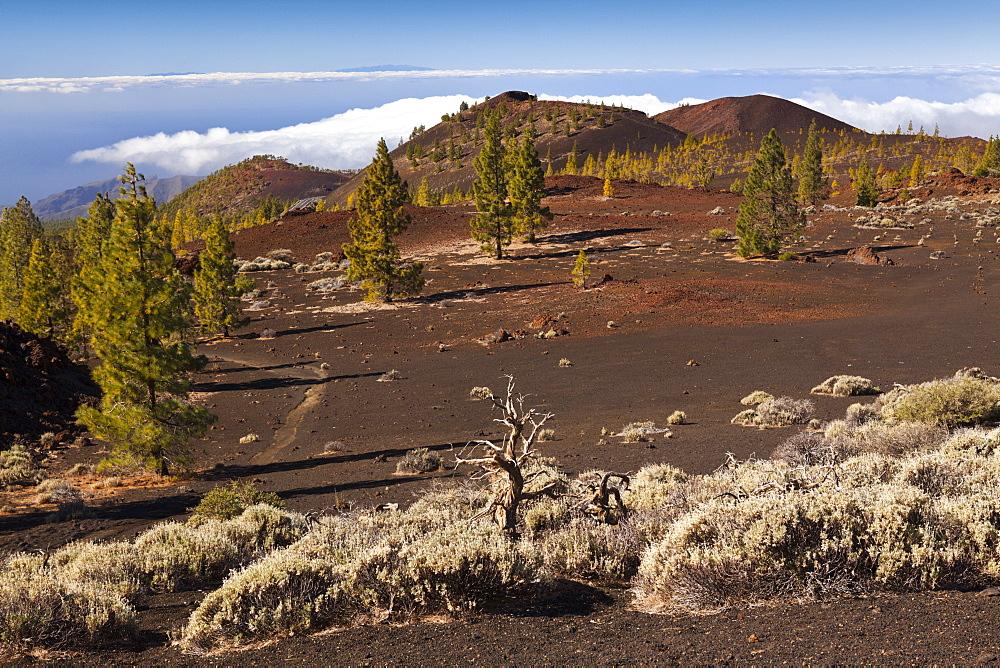 Caldera Landscape of Teide National Park, Tenerife, Spain