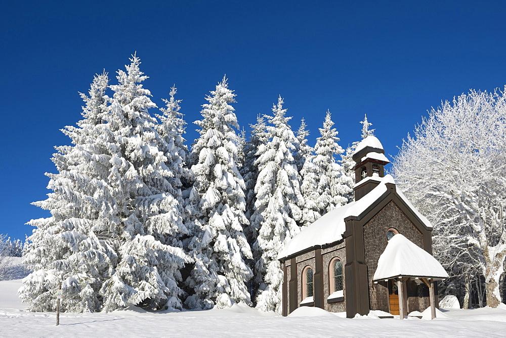 Snow covered trees and chapel, Schauinsland, near Freiburg im Breisgau, Black Forest, Baden-Wuerttemberg, Germany