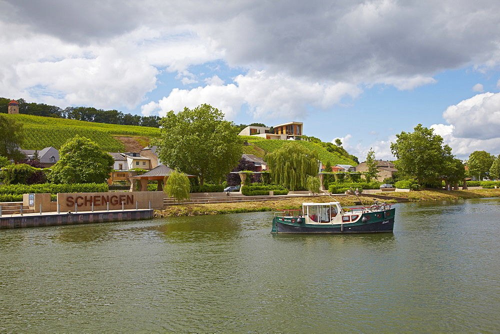 Wine growing estate, Domaine Henri Ruppert, Schengen, Houseboat, River Mosel, Luxembourg, Europe
