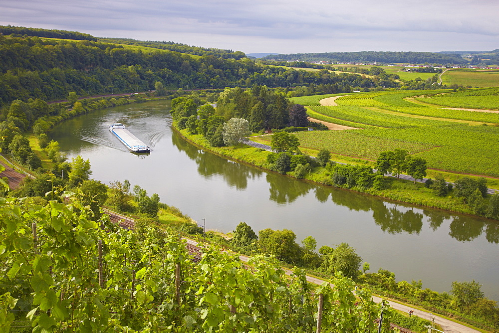 Frighter on the river Mosel between Germany and Luxembourg near Wehr, Germany, Luxembourg, Europe