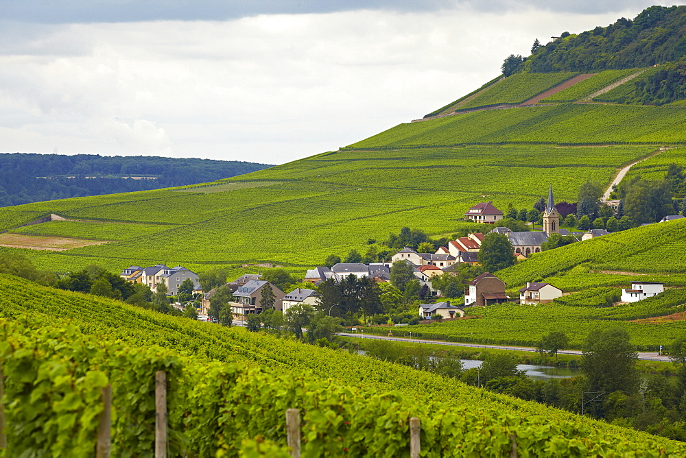 View from near Nittel across the river Mosel at Ahn, Germany, Luxembourg, Europe