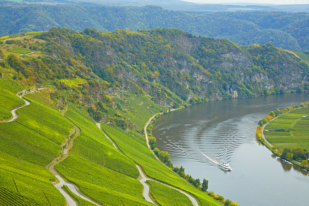 View towards the Moselloreley and the valley of the river Mosel near Piesport, Rhineland-Palatinate, Germany, Europe