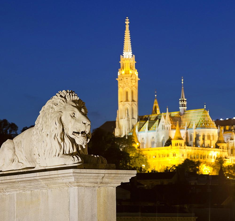 Lion statue on the Chain Bridge, Matthias Church, Buda, Budapest, Hungary