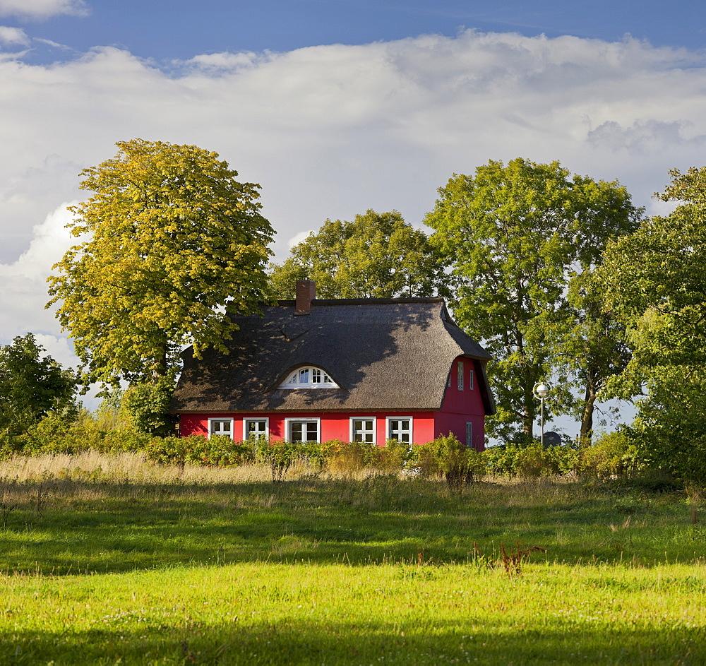 House with thatched roof, Putgarden, Kap Arkona, Ruegen, Mecklenburg-Western Pomerania, Germany