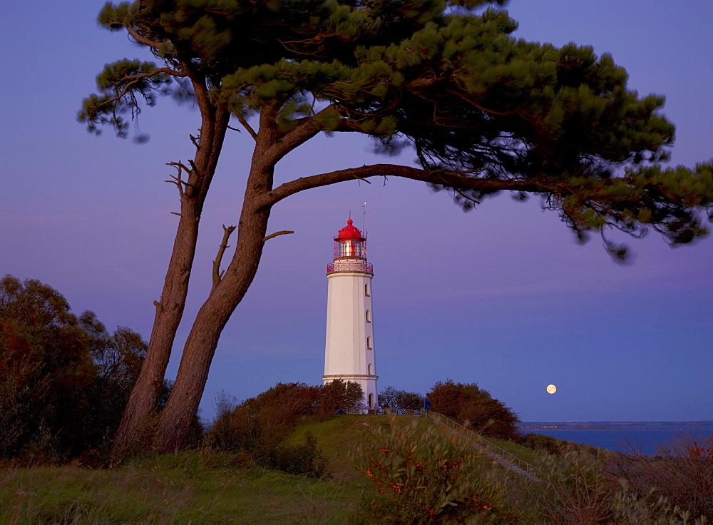 Lighthouse in the evening light, Hiddensee Island, Baltic coast, Mecklenburg-Western Pomerania