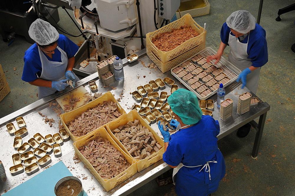 Tuna factory, Calheta on the south coast, Island of Sao Jorge, Azores, Portugal