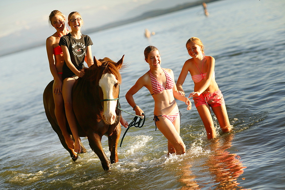 Four girls with a horse in lake Starnberg, Ammerland, Munsing, Upper Bavaria, Germany