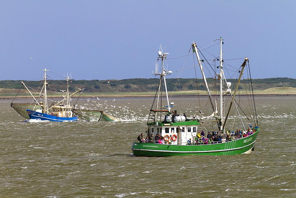 Fishing boats off Langeoog Island, North Sea, East Frisian Islands, East Frisia, Lower Saxony, Germany, Europe