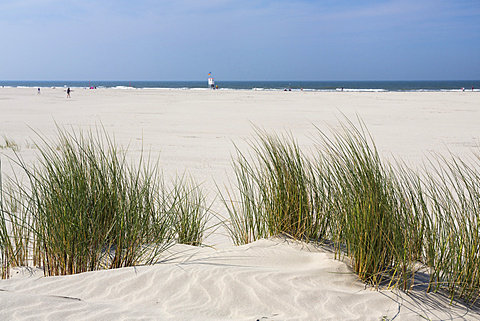 Dunes at the beach, Juist Island, North Sea, East Frisian Islands, East Frisia, Lower Saxony, Germany, Europe