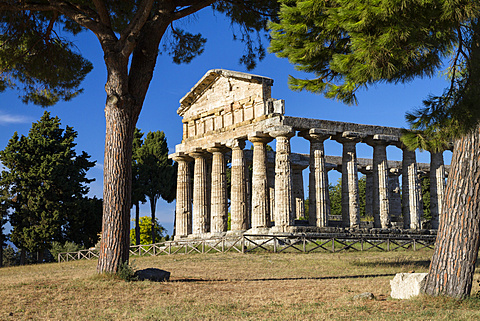 Temple of Athena, historic town of Paestum in the Gulf of Salerno, Capaccio, Campania, Italy, Europe - 1113-99965