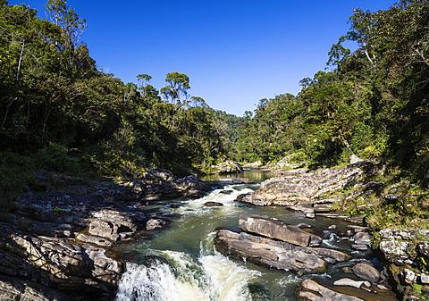 Rainforest and Namorona River, Ranomafana National Park, Madagascar, Africa