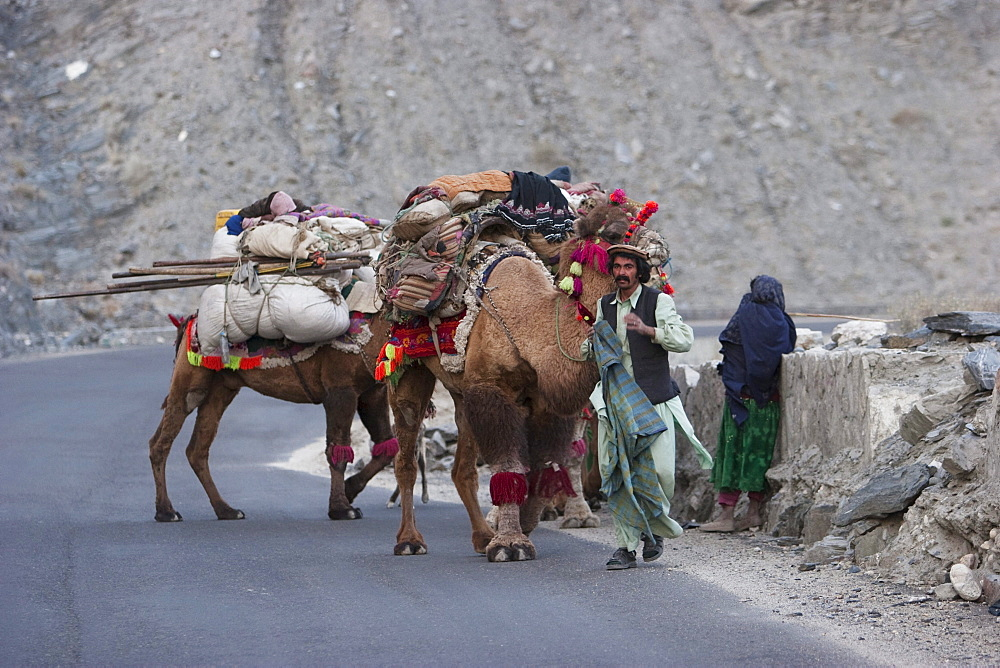 Kuchi nomads and their camels at Tangi Abreshom (Silk Gorge), Kabul Province, Afghanistan