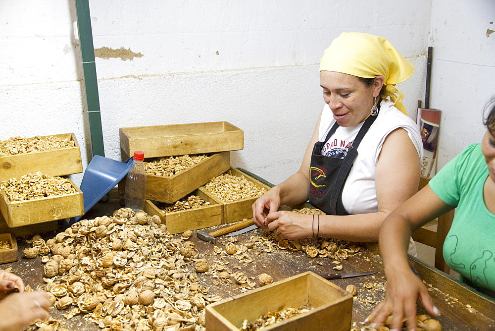 Woman cracking walnuts at Huayrapuca Nueces, Tinogasta, Catamarca, Argentina
