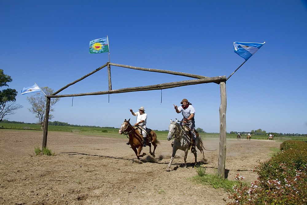 Carrera de sortija (Race of the Ring), traditional game where a Gaucho gallops under a wooden arch and tries to pass a pin through a small ring hanging from an arch, Estancia Santa Susana, Los Cardales, Provincia de Buenos Aires, Argentina