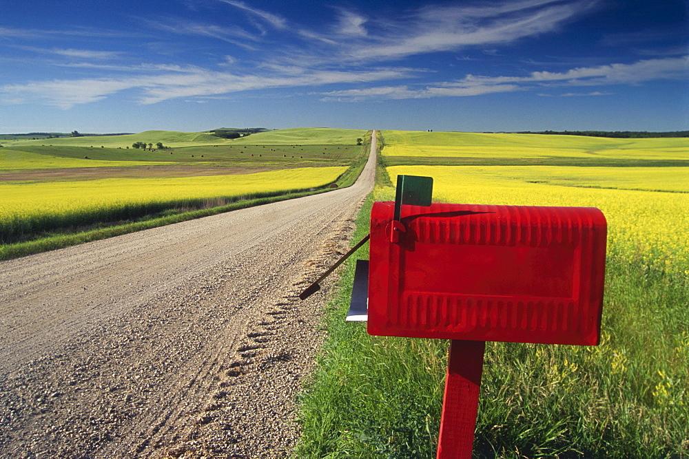 Mailbox on Country Road, Tiger Hills, Manitoba