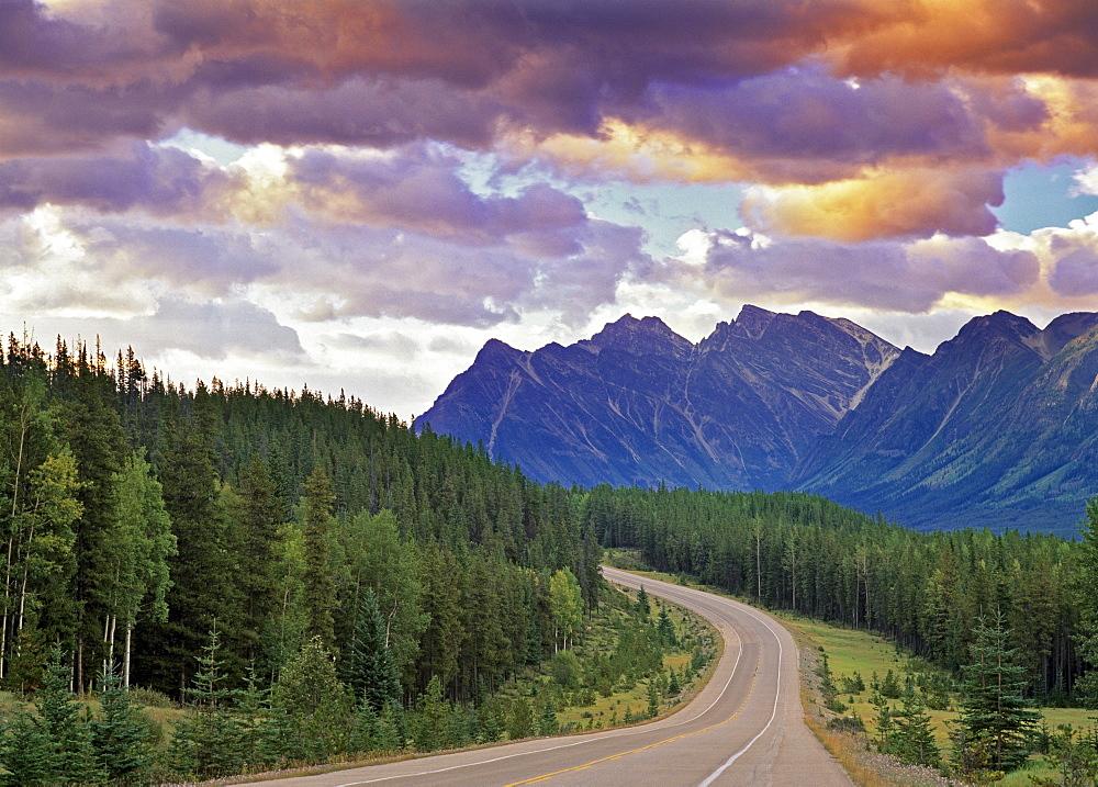Icefields Parkway, Jasper National Park, Alberta.