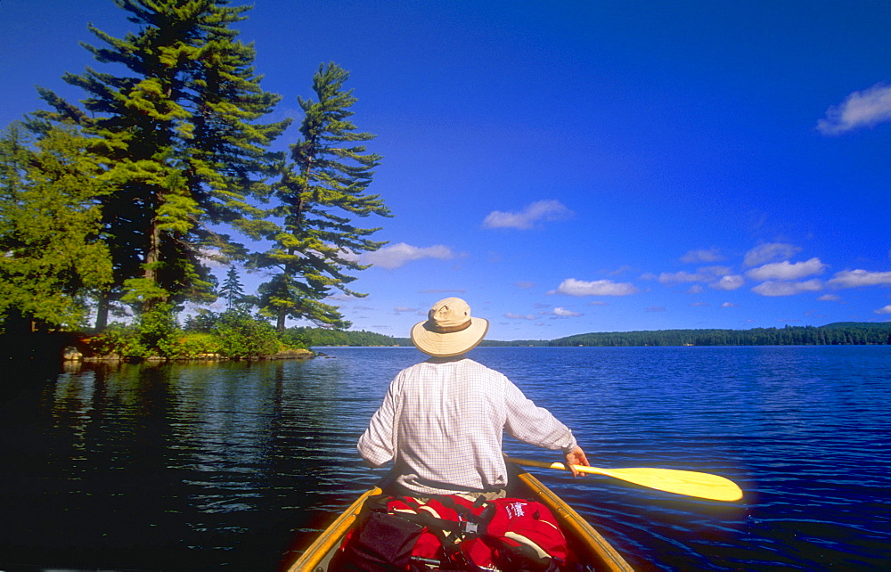 Canoeing, Big Trout Lake, Algonquin Park, Ontario