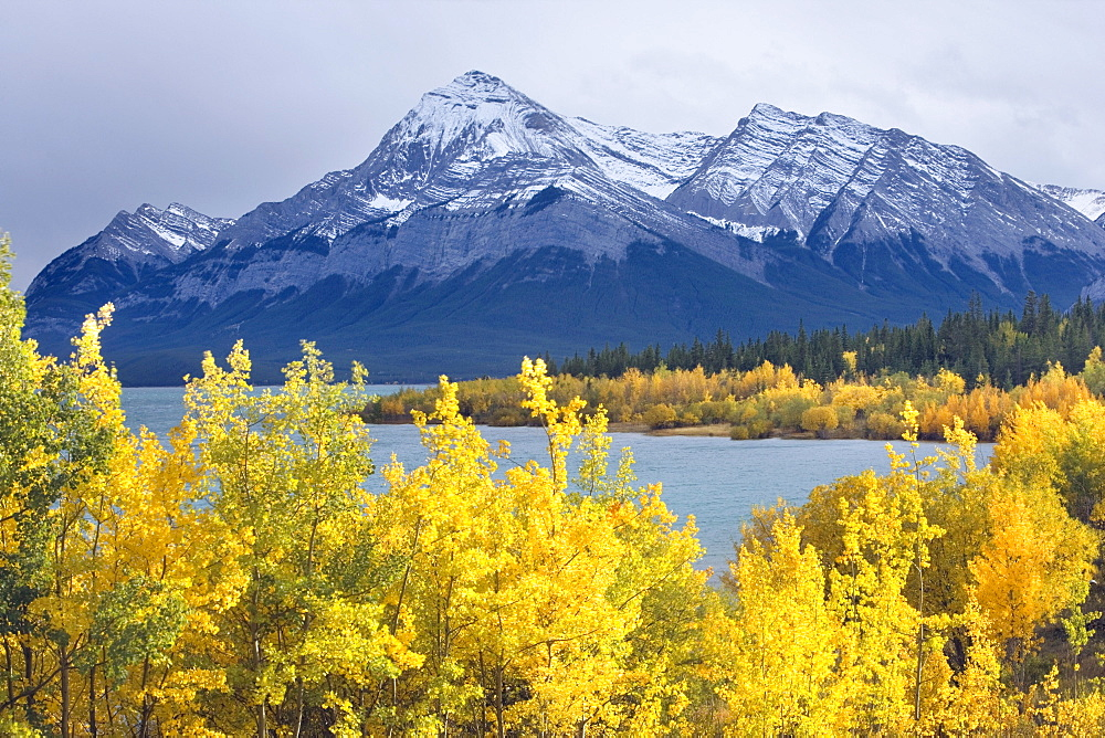 Lake Abraham and Eliot Peak, Kootenay Plains, Alberta, Canada