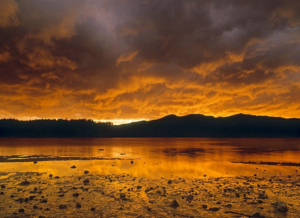 Porpoise Bay Provincial Park, Sechelt, Sunshine Coast, British Columbia, Canada
