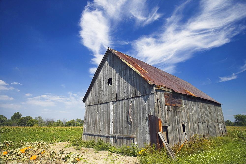 Old Barn, Haldimand County, Niagara Peninsula, Ontario, Canada
