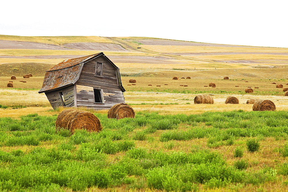 Twisted Barn on Canadian Prairie, Big Muddy Badlands, Saskatchewan