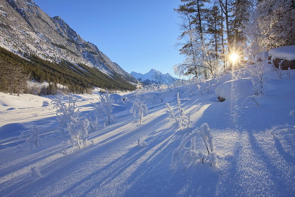 Sunlight breaking through trees on snow-covered Medicine Lake, Jasper National Park, Alberta